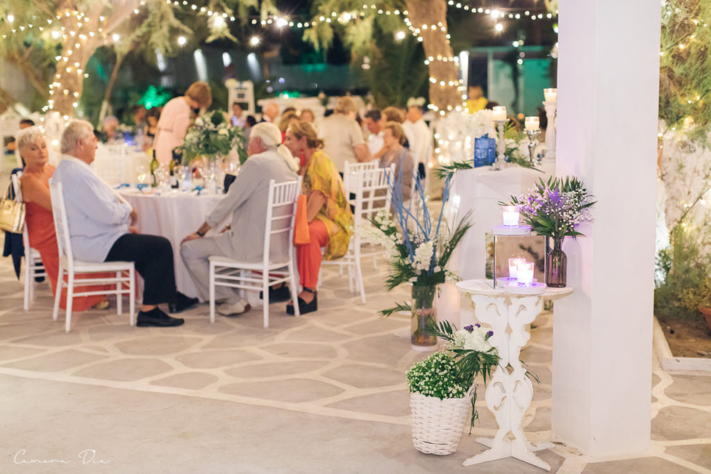 wedding-dimitris-roksolana-417_easy-resize-com
