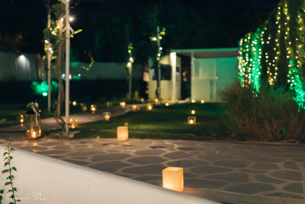 wedding-dimitris-roksolana-428_easy-resize-com