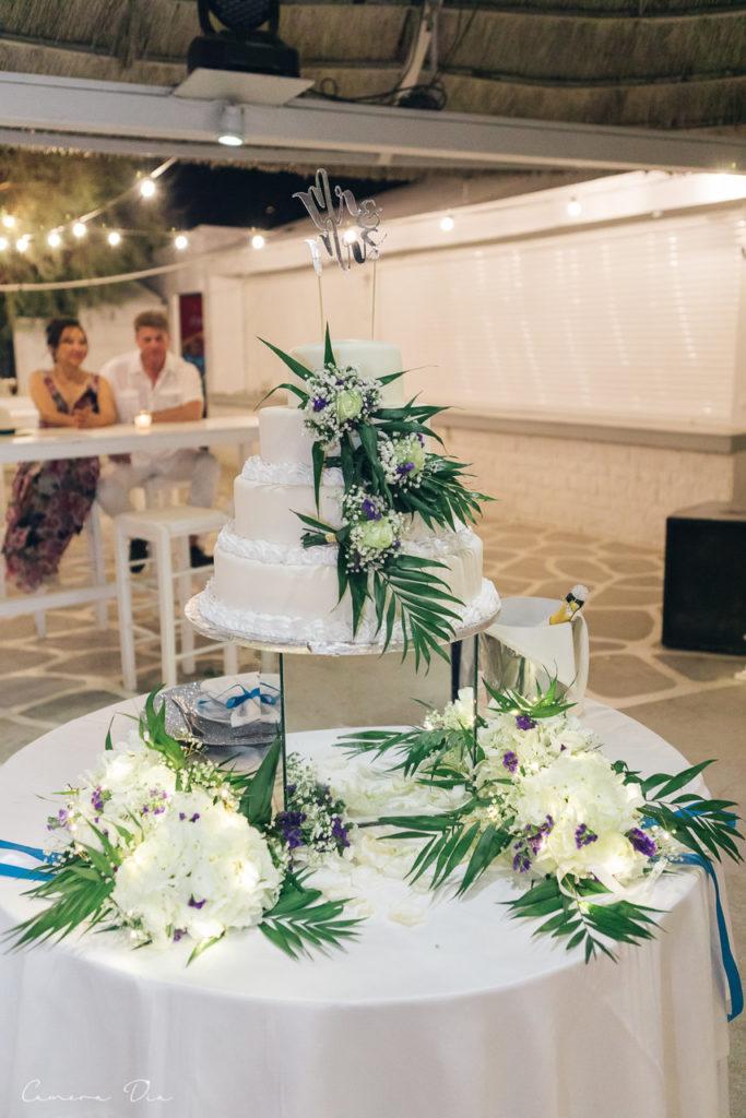 wedding-dimitris-roksolana-577_easy-resize-com