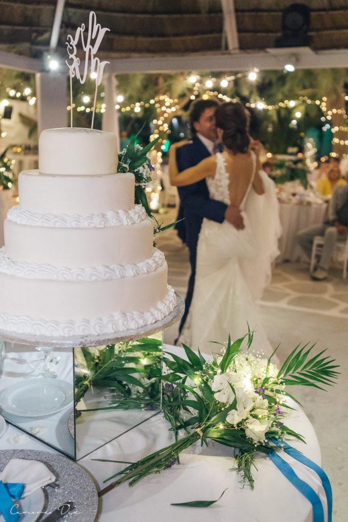 wedding-dimitris-roksolana-578_easy-resize-com